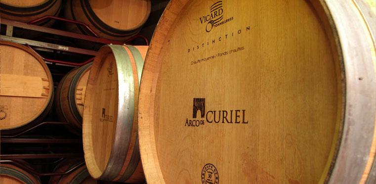 Barricas de vino en bodega